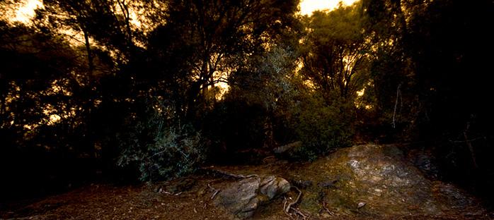 banner_la-noche_3